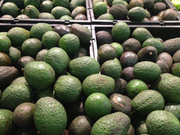aguacate2-768x576